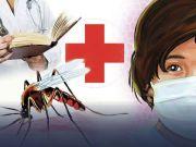Delhi: Doctors advise precaution as dengue cases touch 650