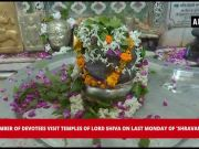 Devotees offer prayers to Lord Shiva on last Monday of auspicious 'Shravan' month