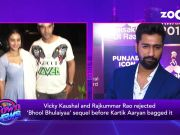 Did Rajkummar Rao and Vicky Kaushal rejected 'Bhool Bhulaiyaa' sequel before Kartik Aaryan bagged it?