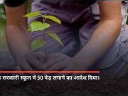 उत्पीड़न मामला: दिल्ली HC ने आरोपी को दी सरकारी स्कूल में 50 पेड़ लगाने की सजा