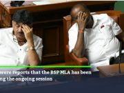 Karnataka crisis: Mayawati directs BSP MLA to support Kumaraswamy