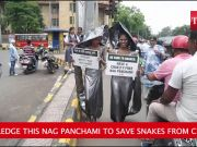 Let's pledge this Nag Panchami to save snakes from cruelty