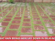 Light rain brings down mercury in Delhi-NCR