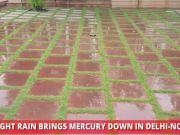 Light rain brings down mercury in Delhi-NCR