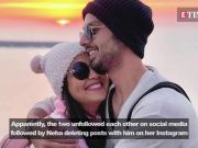 Neha Kakkar refuses to acknowledge Himansh Kohli post her alleged breakup