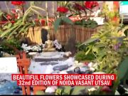 Noida flower show mesmerises visitors