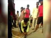 Odisha: Two snakes found entangled in fishing net