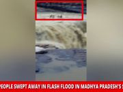 On cam: Several people swept away in flash flood in MP's Shivpuri