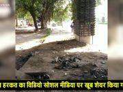 दिल्ली: वर्टिकल गार्डेन से गमले चुराते पकड़ा गया शख्स, मांगी माफी