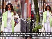 Priyanka Chopra makes a style statement with her pet Diana Chopra
