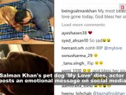 Salman Khan's 'My love' passes away: Actor posts an emotional message on social media