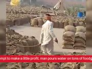 Shocking! Man pours water on tons of foodgrain bags to increase weight