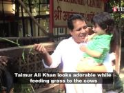 Taimur Ali Khan feeding cows is the cutest thing you'll see today