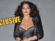 Veena Malik speaks on 26-year jail to her and husband