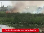 Watch: Fire breaks out in Bengaluru's Varthur lake