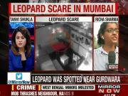 Watch: Leopard enters children play school in Mumbai