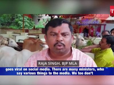 Alwar lynching: BJP MLA stokes controversy, backs cow vigilantes