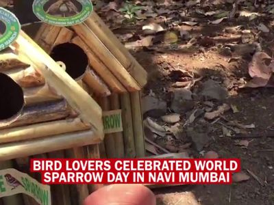 Bird lovers make nests on World Sparrow Day in Navi Mumbai