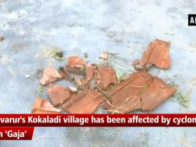 Cyclone Gaja: People stage protest demanding help from govt