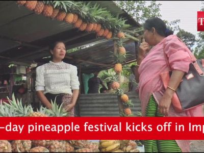 Imphal: 10-day pineapple festival to encourage farmers