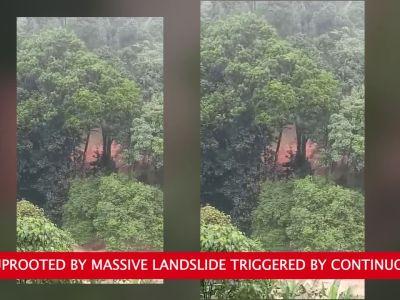 Kerala floods: Massive landslide in Kannur District caught on camera