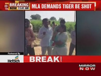 Man-eater tiger should be killed, demands Congress MLA Yashomati Thakur