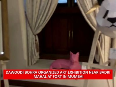 Sketches of horses in different moods attract visitors at art exhibition in Mumbai